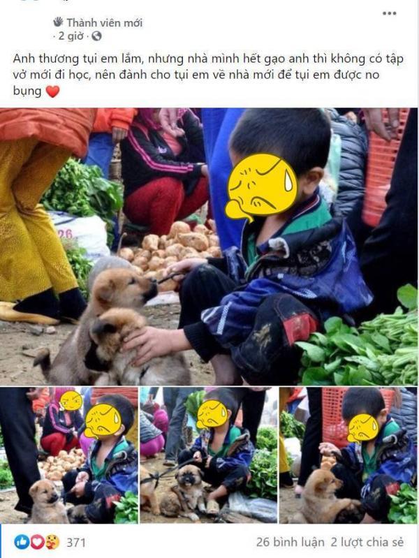 Cậu bé ngồi ôm hai chú chó nhỏ giữa phiên chợ vùng cao